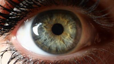 AI, 시력 장애인 '눈'이 되다