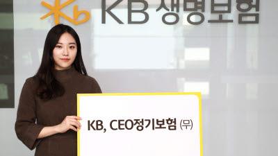 KB생명보험, 'KB, CEO 정기보험 무배당' 출시