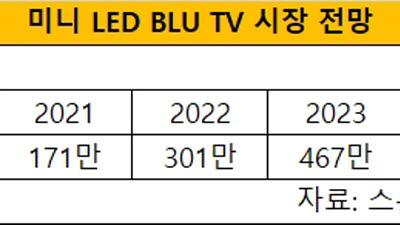 """""""2021년 미니 LED TV 시장 원년""""...스톤파트너스 171만대 출하 전망"""