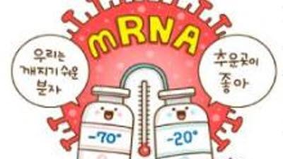 코로나19 정복의 서막? 새로운 백신의 개발