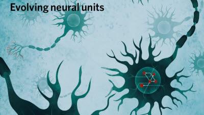 고려대, 인간 뇌 모방한 새로운 생물학적 AI 알고리즘 개발