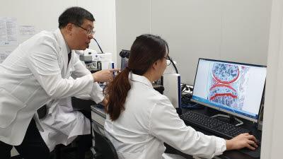 연세대 아이씨엠, LG화학과 퇴행성관절염 유전자치료제 라이선스 계약 체결