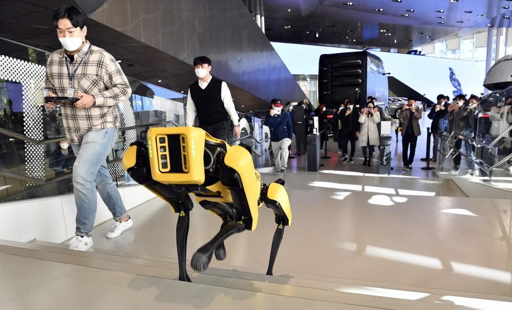 현대차그룹이 인수한 보스톤 다이내믹스 4족 보행 로봇 스팟.