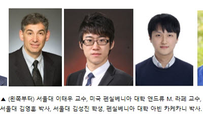 서울대 이태우 교수, 세계 최고 효율 페로브스카이트 발광 다이오드 개발