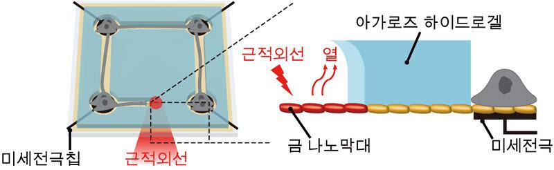 KAIST가 개발한 나노 광열 신경칩 플랫폼 모식도
