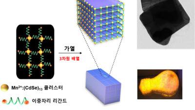 IBS, 원자 26개로 된 반도체로 이산화탄소 유용원료화