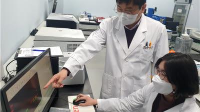 한국뇌연구원, 알츠하이머병의 시냅스 손상 분자기전 규명