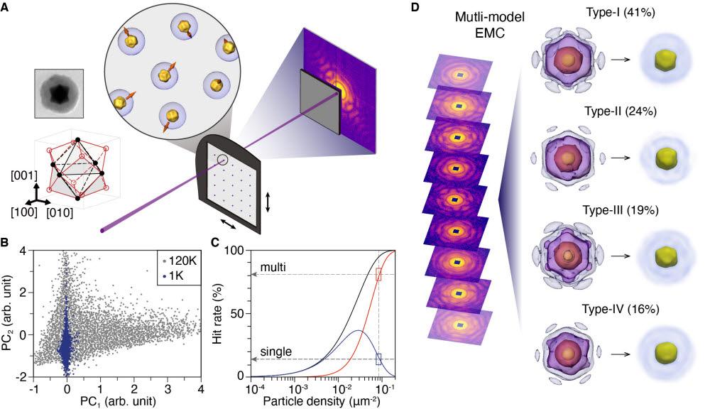 연구팀의 실험방법과 다중모형 3차원 복원 이미지