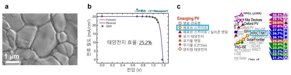 첨가물과 표면처리 공정으로 합성된 페로브스카이트 박막, 특성이 향상된 페로브스카이트 박막으로 제작한 페로브스카이트 태양전지 효율, NREL 효율 차트에 기록된 25.2% 인증 효율.