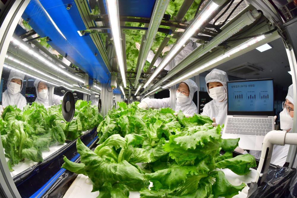 한국형 스마트팜 기술 해외수출 기대