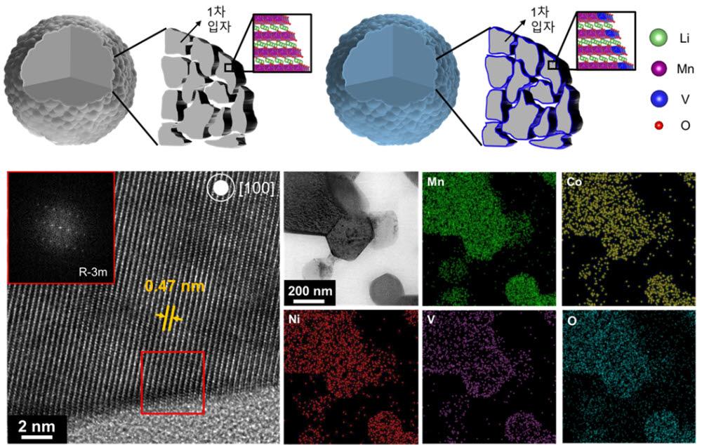 바나듐 이온 도핑 전후 양극소재의 모식도(이미지 상단)와 도핑된 양극소재의 실제 투과 현미경 이미지 및 조성 분포도(하단)
