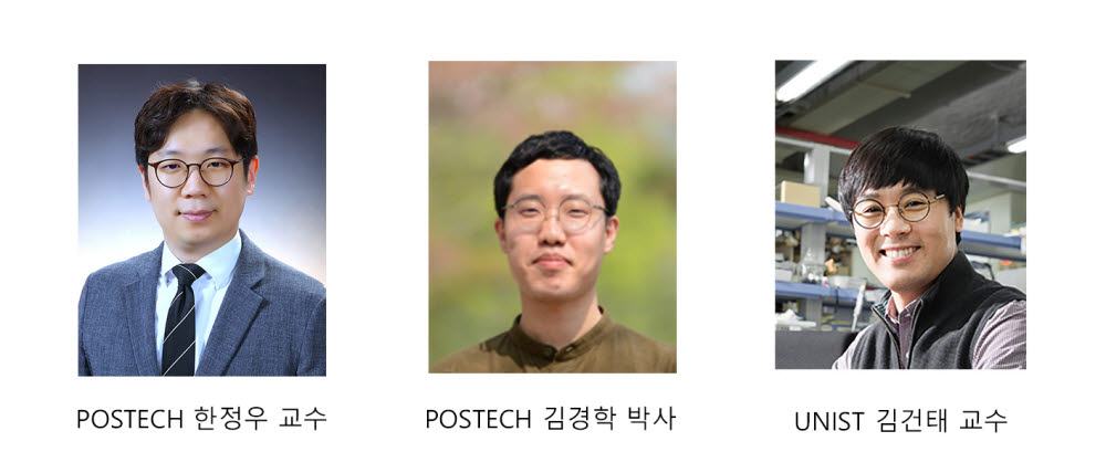원자 단위에서 엑솔루션 현상과 상전이 현상을 최초로 규명한 연구팀.