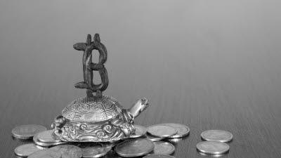 25일 특금법 시행···가상자산 의심거래 3영업일 내 신고해야