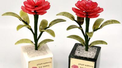 갤러리아토아트, 건강까지 챙기는 '옥꽃 카네이션' 출시