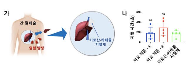 간 절제환자 대상 임상시험에서 키토산-카테콜의 지혈 효과