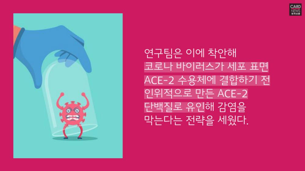 [카드뉴스]코로나19, 덫으로 잡는다