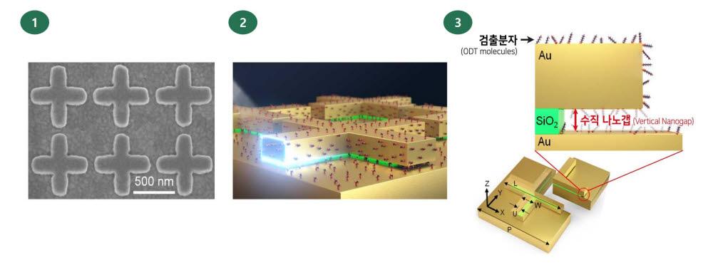 개발 메타물질 전자현미경 사진과 초미세구조체
