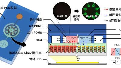 바이러스 현장진단 초고속으로...KAIST '실시간 나노 플라스모닉 유전자 분석 기술' 개발