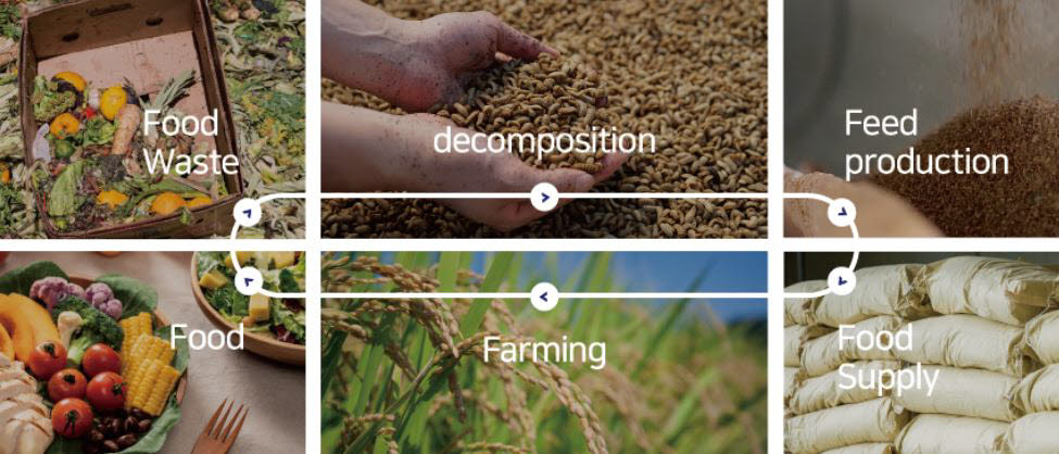 뉴트리인더스트리는 남은 음식물을 재활용하는 과정에서 음식물폐수를 배출하지 않고 음식물 100%를 곤충 단백질로 바이오컨버전하는 Zero-waste recycling을 실현하고 있다 <출처:뉴트리인더스트리><br />남은 음식물을 재활용하는 과정에서 음식물폐수를 배출하지 않고 음식물 100%를 곤충 단백질로 바이오컨버전 합니다