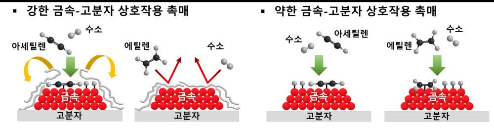 금속-고분자 상호작용에 따른 아세틸렌 및 에틸렌 수소화 반응 모식도