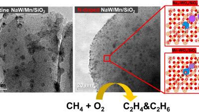 석유화학의 '쌀' 에틸렌 보다 더 많이...에너지연, 새로운 촉매 개발