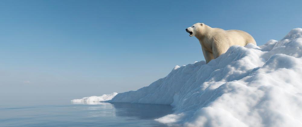 [ET시선]기후변화와 일자리
