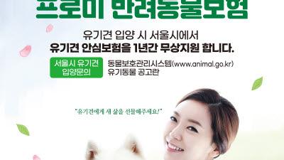 DB손보, 유기견 입양 보호자에 '프로미 반려동물보험' 제공