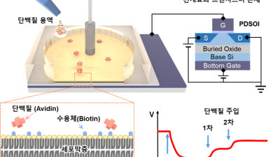 {htmlspecialchars(KIST, 민감도 개선 바이오센서 기술 개발...'인체 세포막 특성' 모사 결과)}