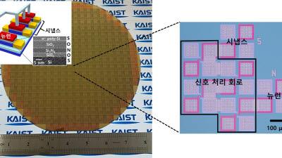 KAIST, 인간 뇌 모방한뉴로모픽 반도체 개발...뉴런·시냅스 기능 동시 수행도 가능