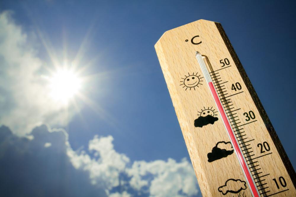 기후 변화로 인한 폭염으로 전 세계가 고통받고 있다. (출처: shutterstock)