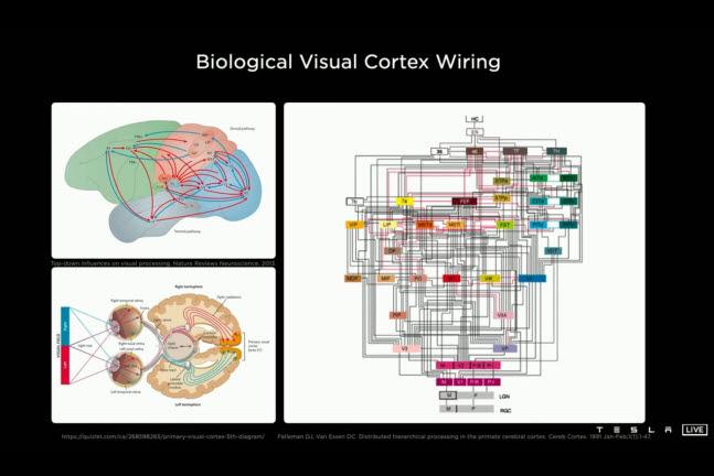 테슬라 AI데이 캡처 사진. 테슬라의 AI시스템은 인간의 두뇌를 작동시키는 신경회로망 원리를 알고리즘에 적용했다.