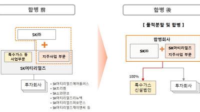 SK, SK머티리얼즈 흡수 합병…'첨단 소재 투자 일원화'