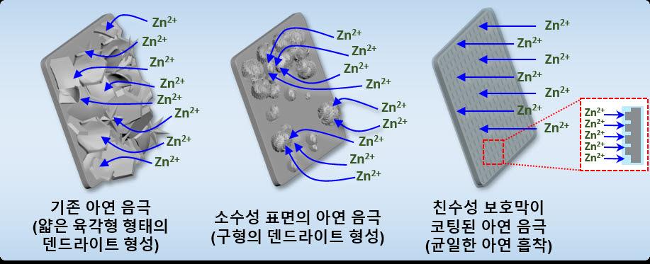 아연 음극 표면의 화학적 성질에 따라 다르게 형성되는 덴드라이트 형태 모식도