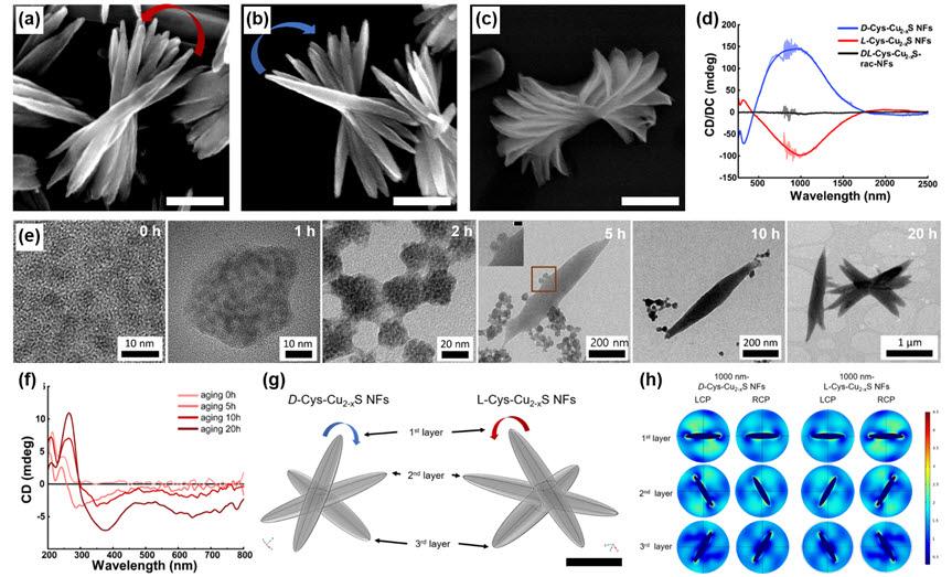 연구팀에 의해 최초로 개발된 광대역 광학 활성을 보이는 소재의 전자현미경사진, 광학 활성 그래프 및 컴퓨터 시뮬레이션 결과.