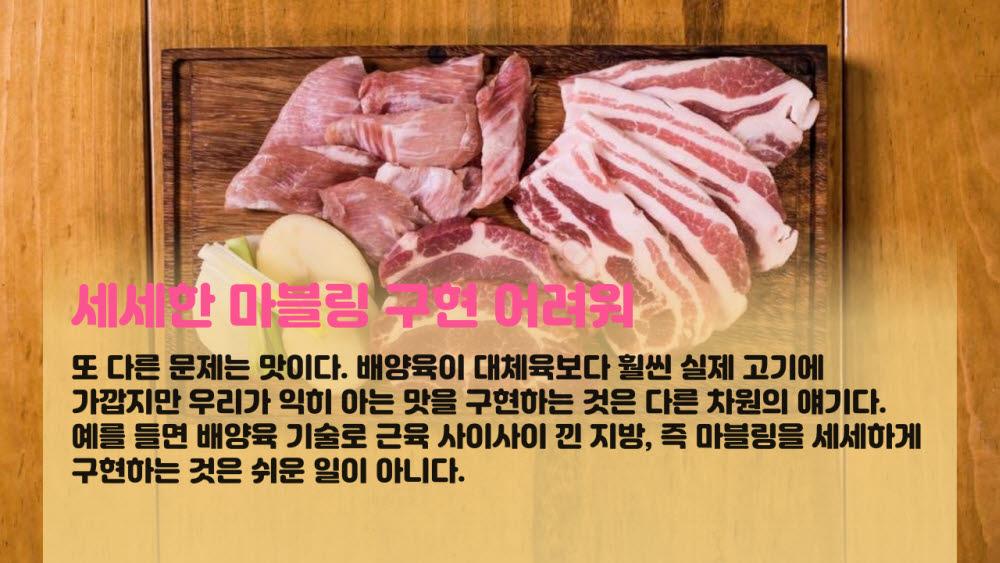 [카드뉴스]진짜 같은 고기 대체육·배양육