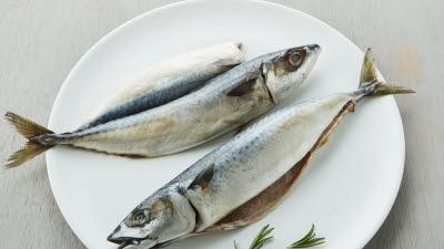 마켓컬리, 고등어·새우·오징어 등 일상 수산물 판매량 급증