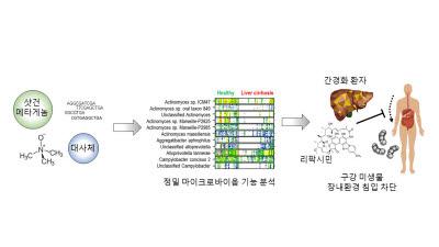 GIST, 간경변증 발생·구강미생물 장내 침입치료 약물 기전 공동 규명?