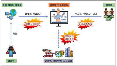 '1000만 팔로워' 인플루언서 뒷광고 받고 탈세…세무조사 착수